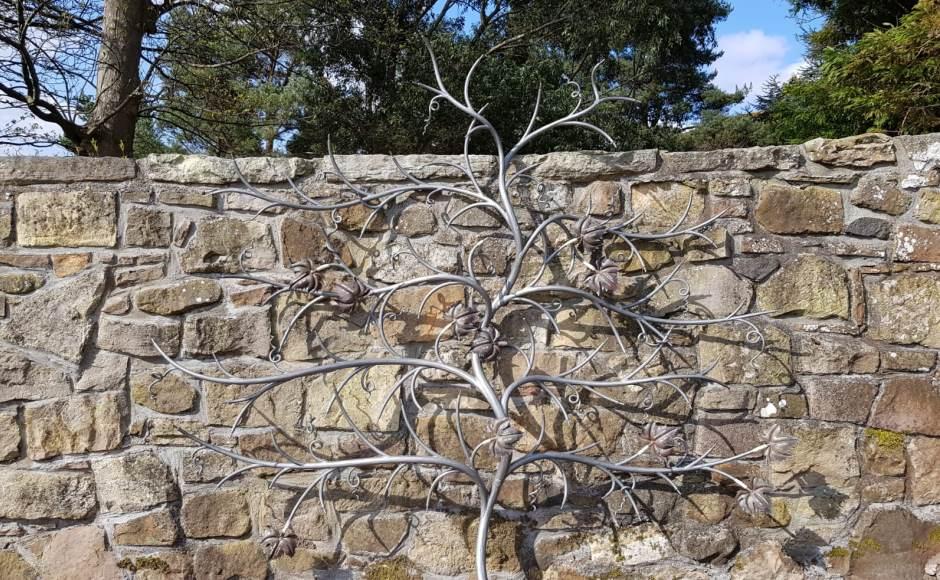 Galloway Vine
