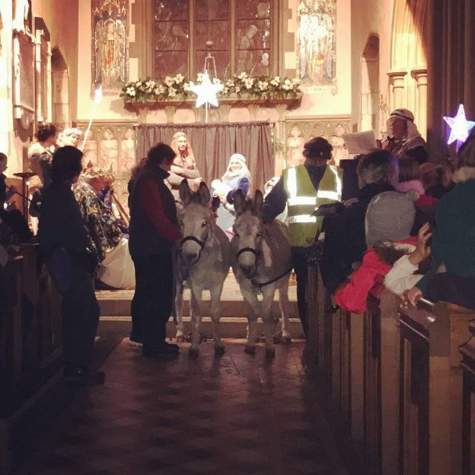 Donkeys at a Nativity service