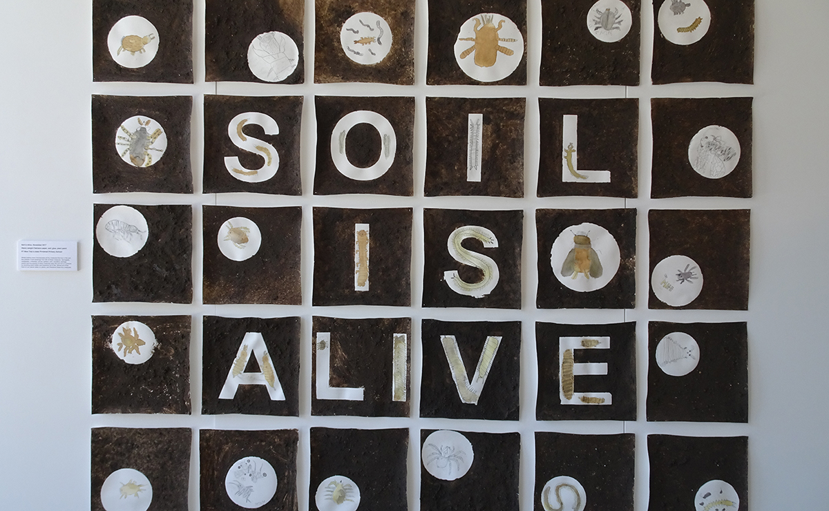 One of the exhibits, Soil is Alive, is an investigation of the underworld of soil, in which millions of living creatures recycle the surface's organic matter. © RBGE
