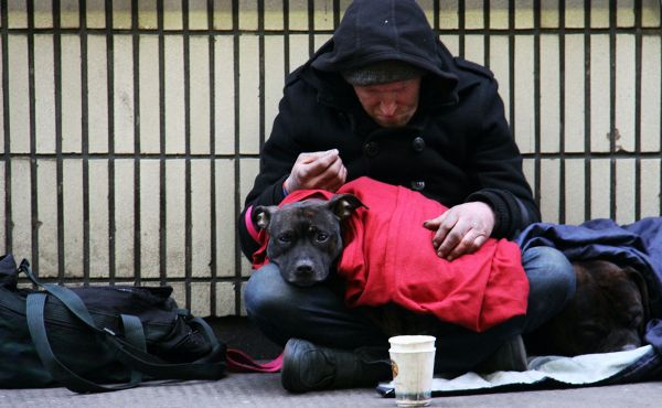 Man on the street begging with dog