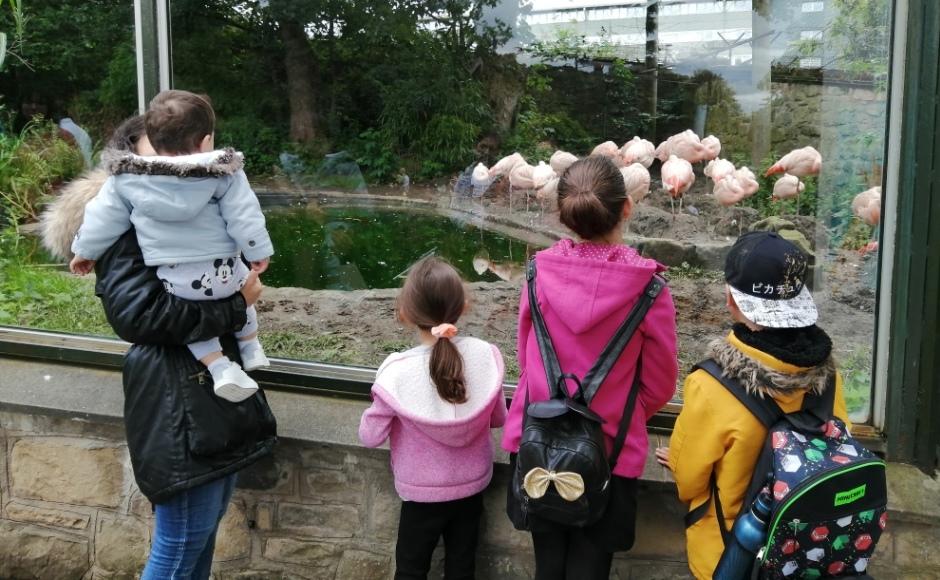 Edinburgh Zoo visit