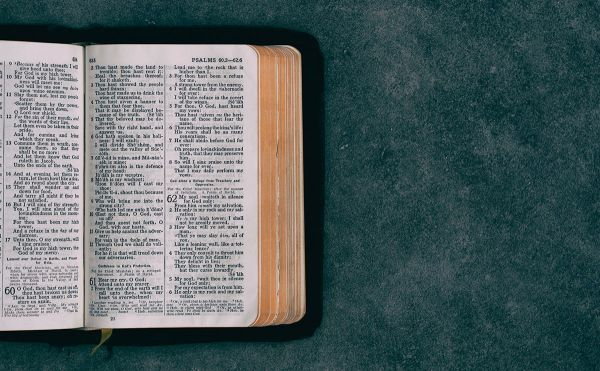 bible open on a green background