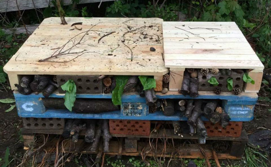 A picture of a so-called bug hotel