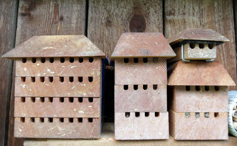 Three bee houses