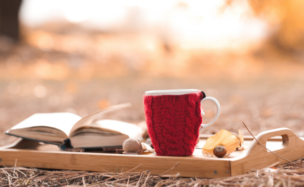 A book and a cup of tea on a tray outside in the woods during Autumn